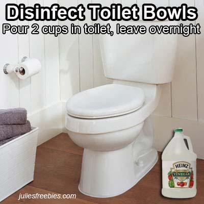 clean-toilet-with-vinegar