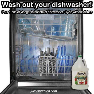 wash-out-dishwasher-with-vinegar