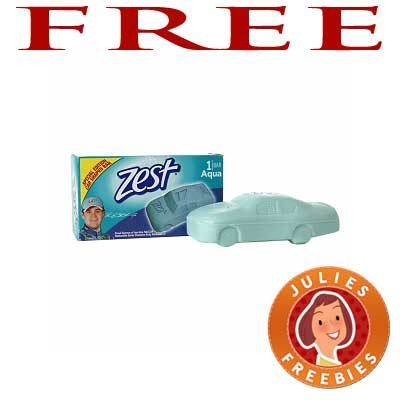 zest car shaped soap