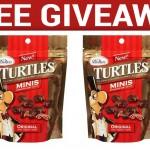 free-demets-turtles-minis