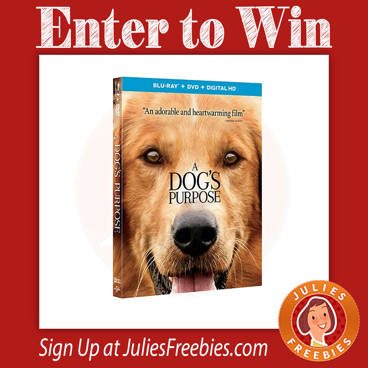 Enter To Win 1 000 Gift Card From Blu Dot: Win A Dog's Purpose Prize Pack