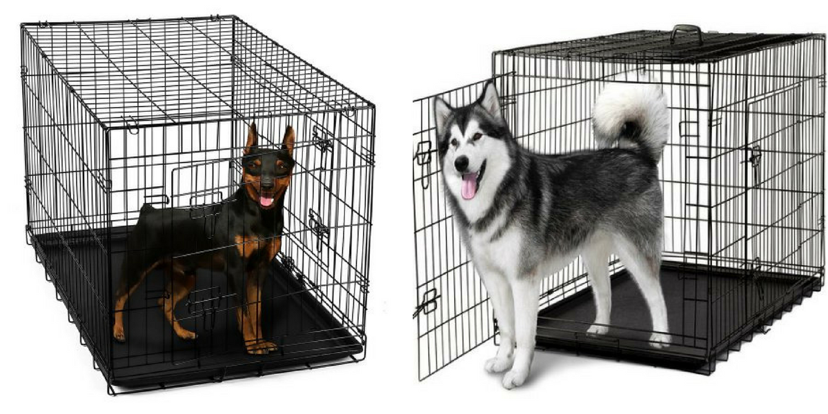 If Youu0027re In Need Of A Dog Crate Then Hurry Over Here To Walmart Where  Youu0027ll Find This OxGord 24u2033 Heavy Duty Foldable Double Door Dog Crate With  Divider ...