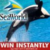 Coca-Cola and SeaWorld at Regal Cinemas Sweepstakes & Instant Win Game