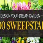 The $5,000 Sweepstakes