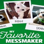 """The Libman """"My Favorite Messmaker"""" Sweepstakes"""