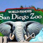 San Diego Zoo Sweepstakes