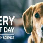 The Hill's Science Diet Every Great Day Sweepstakes