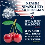 Star Spangled Sweepstakes