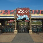 Nationwide Ultimate Zoo Experience Sweepstakes