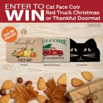 Fall Themed Doormat Giveaway