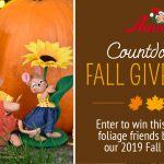 Annalee Countdown to Fall Giveaway