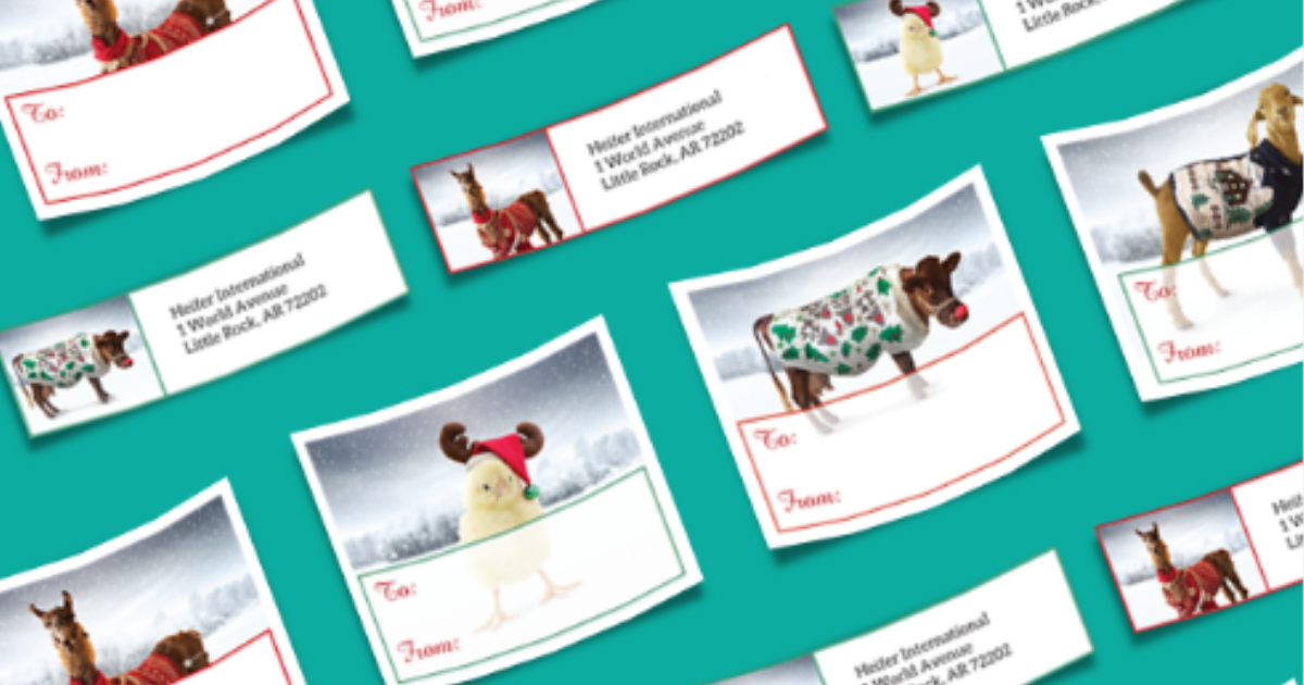 Free Heifer Holiday Address Labels - Julie's Freebies