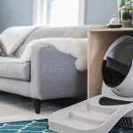 Monthly Litter Robot Giveaway