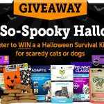 A Not-So-Spooky Halloween Sweepstakes