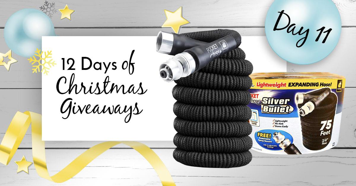 BulbHead 12 Days of Giveaways – Day 11