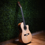 Chicago Music Exchange Cordoba Acoustic Guitar Giveaway