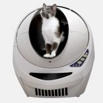 February Litter Robot Giveaway