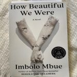 How Beautiful We Were Giveaway