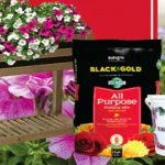 Elevated Garden Planter and Flowers Giveaway