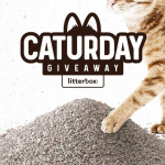 Litterbox April Caturday Giveaway