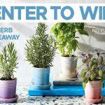 Le Creuset Herb Planter Giveaway