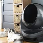 Litter Robot April Giveaway