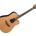 Takamine Garth Brooks Guitar & PA Giveaway