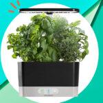 Hydroponic Indoor Herb Garden Giveaway