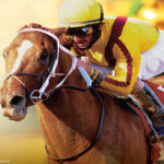 The 2022 Kentucky Derby Sweepstakes