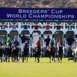 Breeders' Cup Dreaming of Del Mar Sweepstakes