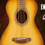 Breedlove Exotic S Guitar Giveaway