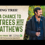 The Dreaming Tree 2021 Sweepstakes