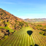 """The Chandon """"Win a Trip to Napa"""" Sweepstakes"""
