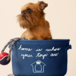 National Walk Your Dog Week Giveaway